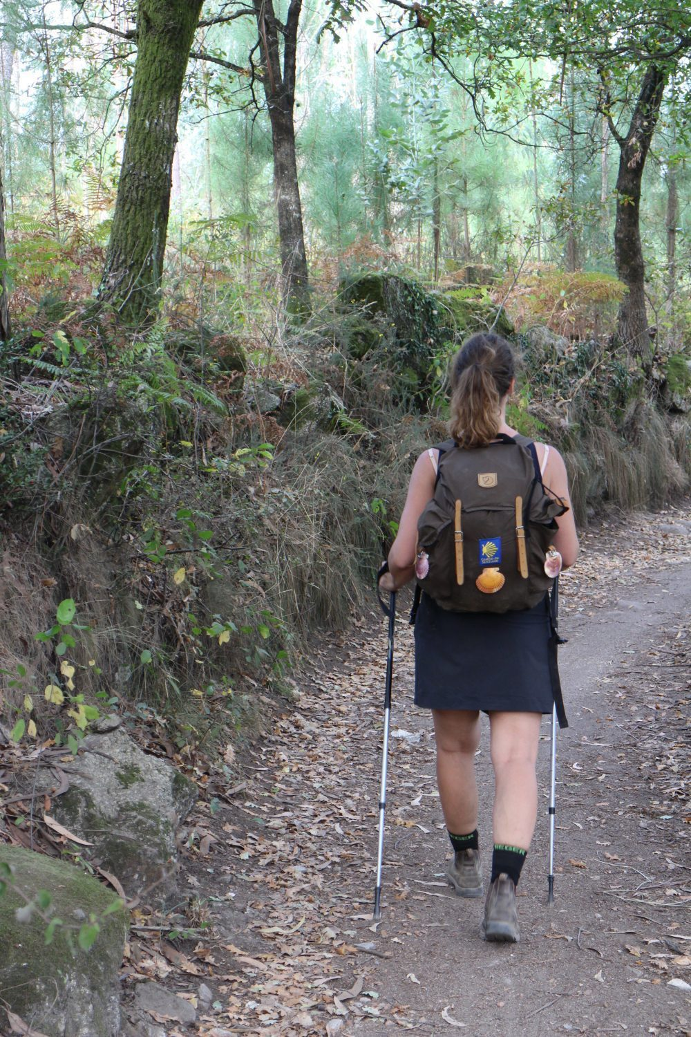 Walking the camino alone is it lonely
