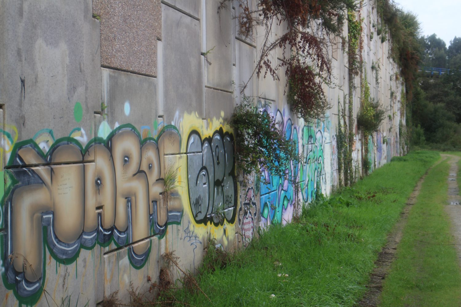 Graffiti along Camino Inglés