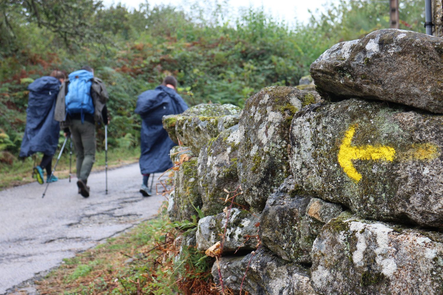Yellow-arrow-finding-your-way-on-the-camino