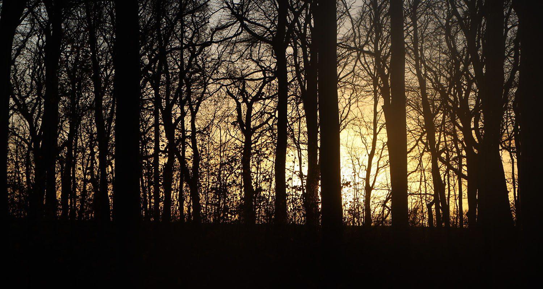 Solnedgang over vandrerute ved Jægerspris